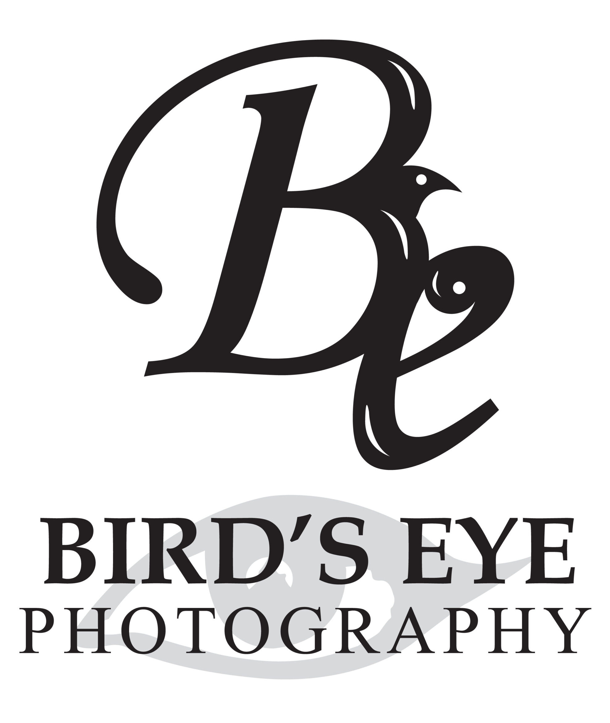 Bird's Eye Photography